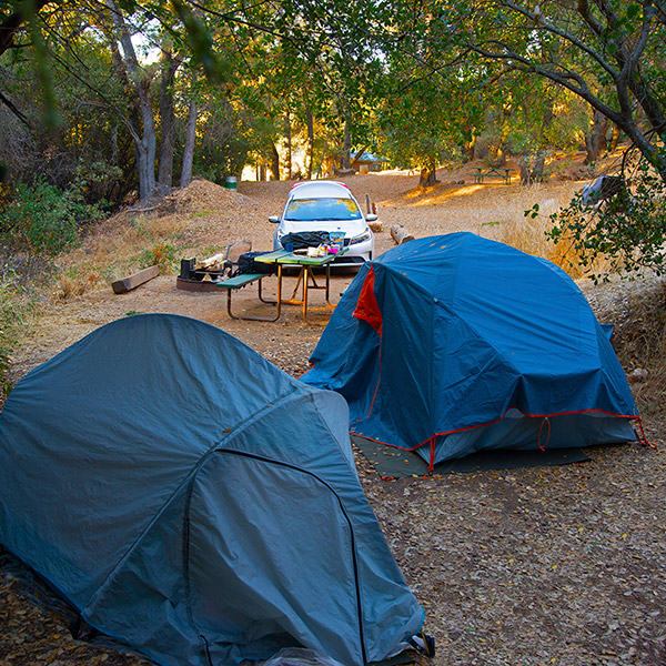 There are lots of great ways to save money while travelling.  Car rental camping for example can help you stretch that dollar even further.
